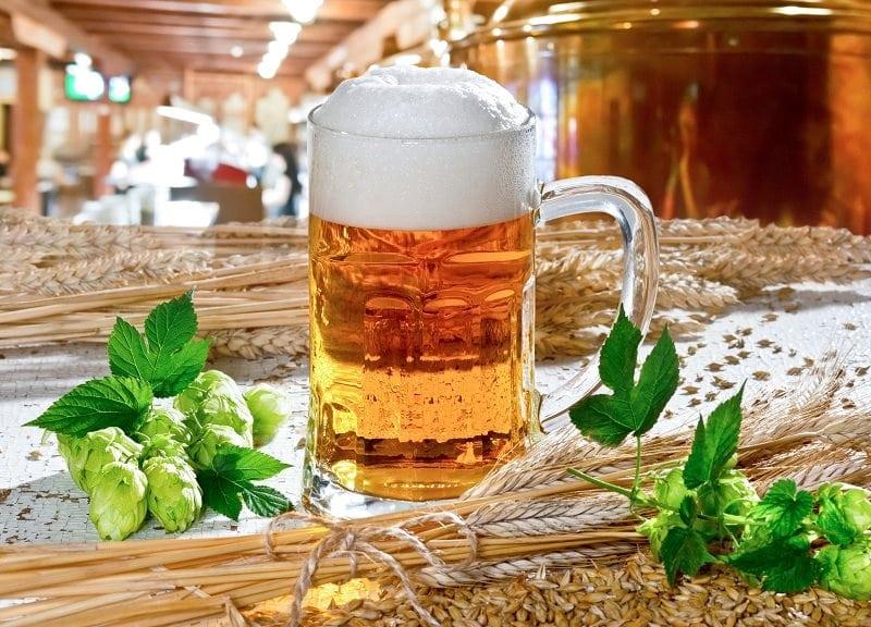 Come Conservare la Birra: 6 Passaggi (con Immagini)